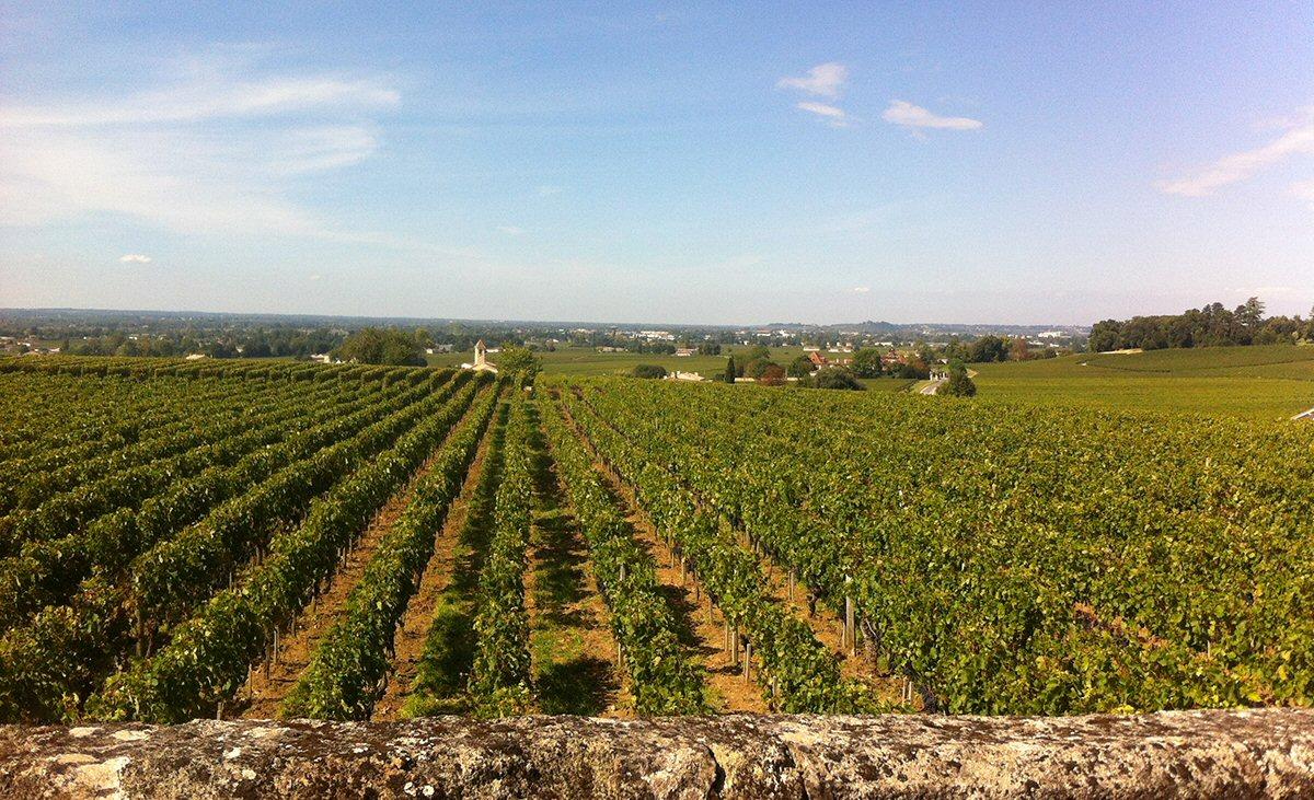 Pomerol & Saint-Emilion